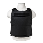 (DISCREET) SAFE-PACK PLATE CARRIER